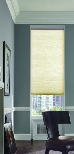 Cellular Shades - Vertical Blinds for window by Treaty Oak Company